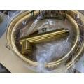 Гигиенический душ с гидроёршиком в цвете БРАШИРОВАННОЕ ЗОЛОТО Carlo Frattini F2320/1NOS