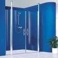 Душевая дверь Reichel Vision 100х195 см SVA40T1L-1000G71ET2/RTC D2